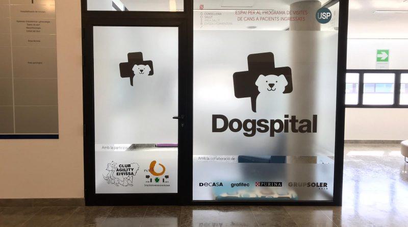 Dogspital im Krankenhaus von Ibiza