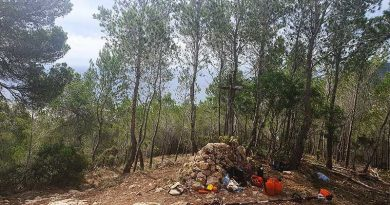 Bei Waldbrand das Leben der Menschen auf Ibiza schützen