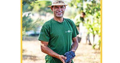 """""""Ibiza Produce"""" und """"Green Delivery"""" bieten den Inselbewohnern Ibiza-Produkte an"""